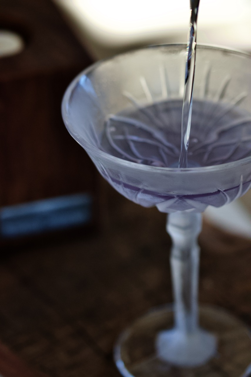 Glassware martini glass